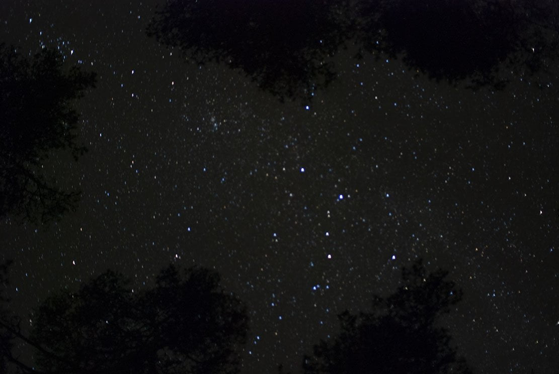 Night sky observed while lying down with many stars