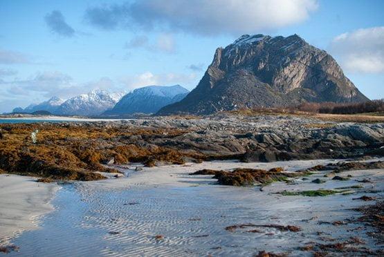 Scandinavia, nature and working manually